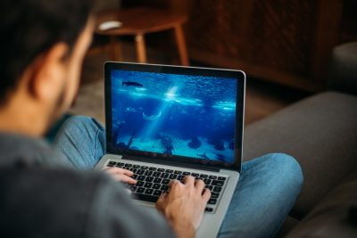Man with computer in lap looking at aquarium on screen